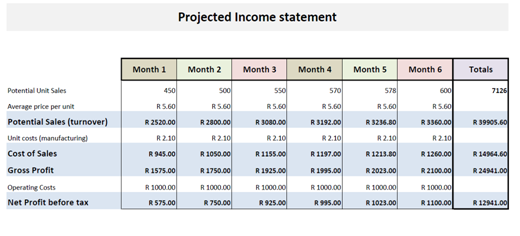 Business financial plan income statement for Projected financial statements template